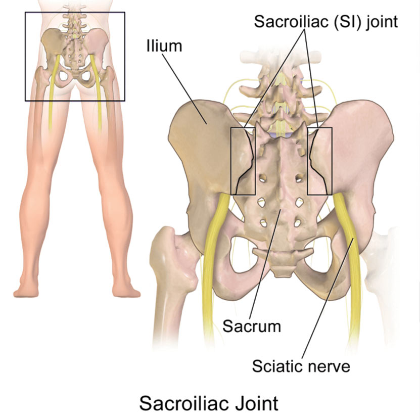 Sacroiliac Joint Problems Can Treated By Acupuncture Beijing